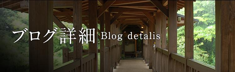ブログ詳細